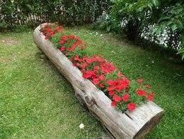 jardin-casero