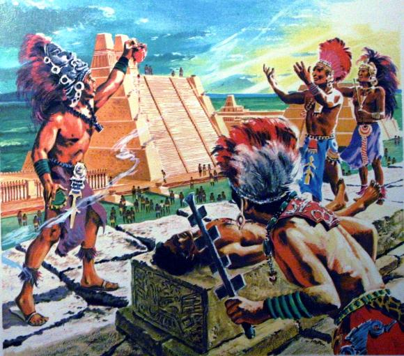 Ara Azteca