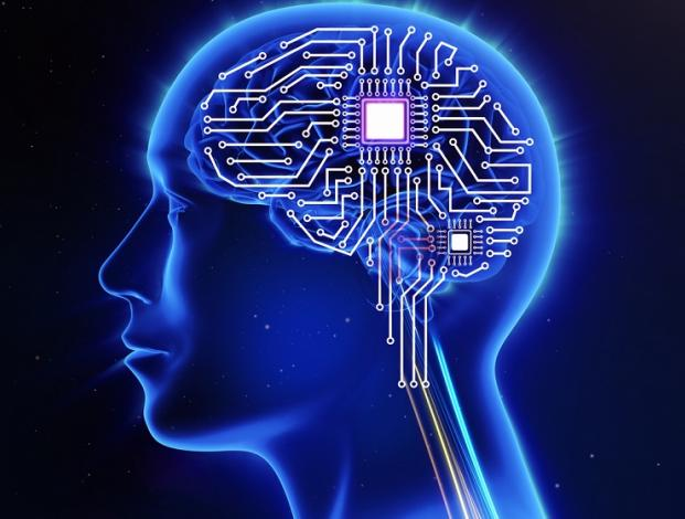 Cerebro como ordenador