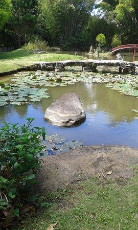 roca en lago-jardin-japones