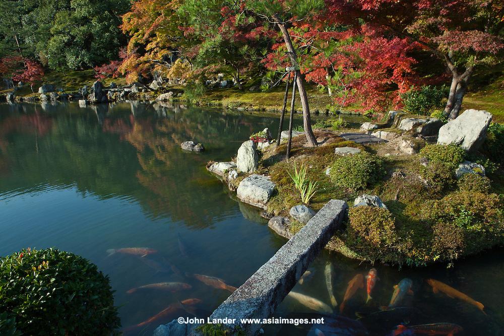 Tenryuji Sogenchi Pond Garden