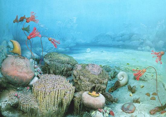 Oceano cambrico