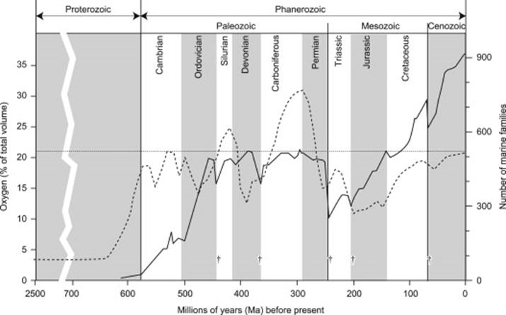 Oxigeno en el carbonifero.png