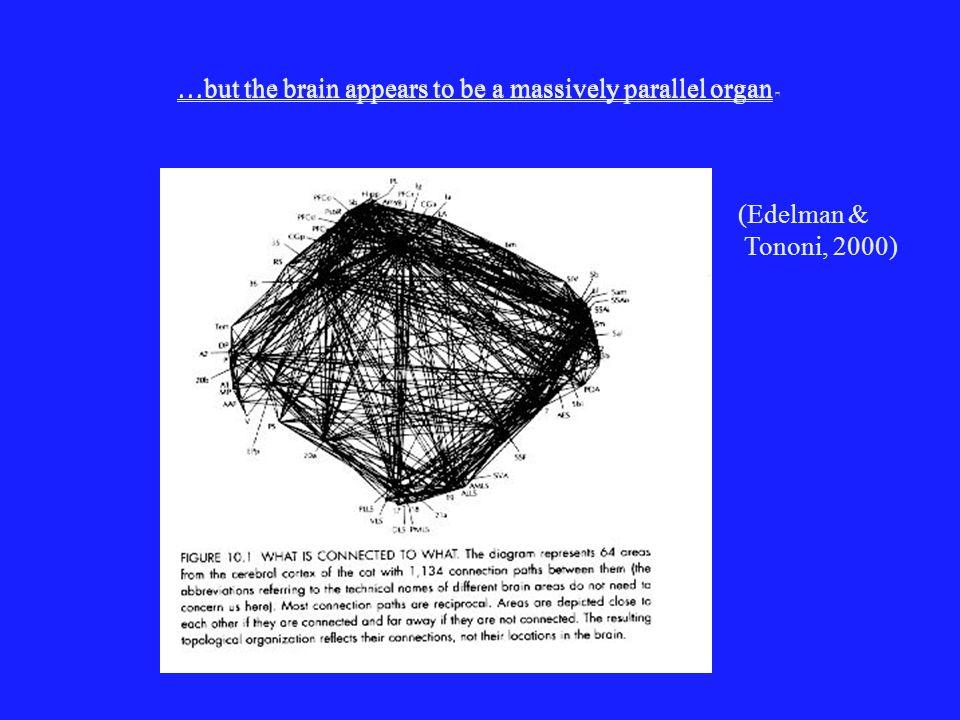 Modelo de percepcion visual de Edelman