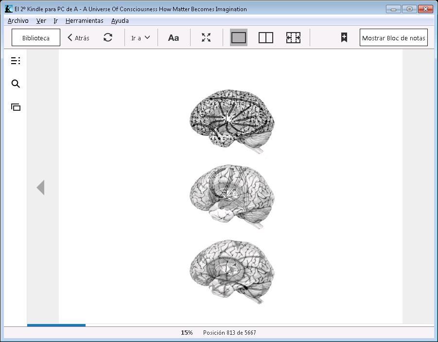 Tres estructuras dinamicas cerebrales